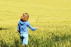 域女孩少年走的麦子 库存图片