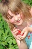 域女孩草莓 库存照片