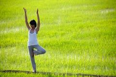 域实践常设瑜伽的女孩稻 免版税库存照片