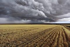 域收获风暴雷 免版税库存图片