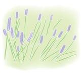 域淡紫色水彩 库存照片