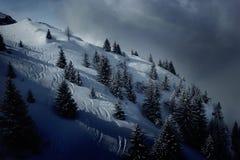 域滑雪 免版税库存照片