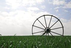 域灌溉系统麦子 库存照片