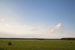 域的干草堆 库存照片