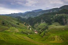 域米越南 免版税库存图片