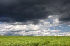 域绿色天空风暴 免版税图库摄影