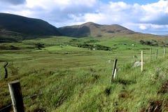 域绿色爱尔兰 库存图片