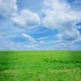 域绿色 免版税库存照片