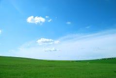 域绿色 图库摄影