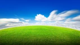 域草绿色天空 库存照片