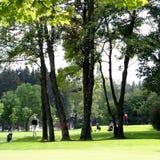 域高尔夫球操场 库存照片
