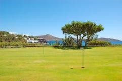 域高尔夫球旅馆豪华结构树 图库摄影