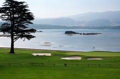 域高尔夫球 免版税库存照片