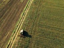 培养玉米庄稼领域,鸟瞰图的拖拉机 免版税库存图片