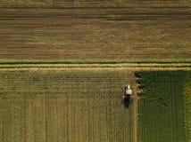 培养玉米庄稼领域,鸟瞰图的拖拉机 免版税库存照片