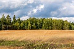 培养的领域在有黑暗和湿土壤的乡下农业的 免版税图库摄影