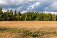 培养的领域在有黑暗和湿土壤的乡下农业的 库存照片