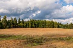 培养的领域在有黑暗和湿土壤的乡下农业的 图库摄影