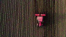 培养领域的拖拉机在春天,空中日落视图 影视素材