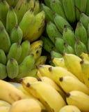 培养的香蕉背景 免版税图库摄影