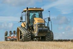 培养英国庄稼领域的现代挑战者拖拉机 库存照片
