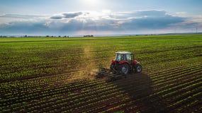 培养领域的拖拉机在春天 库存照片
