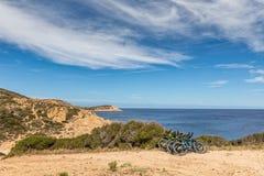 基于在沿海道路的灌木的六辆自行车在可西嘉岛 图库摄影