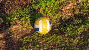 基于地面的白色,黄色和蓝色足球在金黄小时太阳的一个公园 免版税库存照片