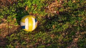 基于地面的白色,黄色和蓝色足球在金黄小时太阳的一个公园 免版税图库摄影