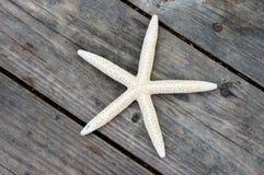 基于木甲板的海星 免版税库存图片