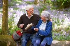 基于步行的资深夫妇通过会开蓝色钟形花的草木头 库存图片