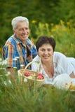 基于草的愉快的长辈夫妇 图库摄影