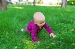 基于绿草的愉快的婴孩 图库摄影