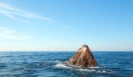 """基于""""the土地Los卡约埃尔考斯End† Point†的加利福尼亚海狮在Cabo圣卢卡斯在巴哈墨西哥 免版税图库摄影"""