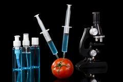 基因上修改过的菜蕃茄疫苗 库存图片