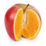 基因上修改过的食物(裁减路线) 库存照片