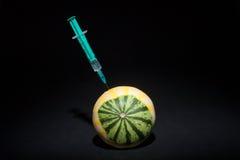 基因上和化工修改过的水果和蔬菜 GMO食物 南瓜 免版税库存照片