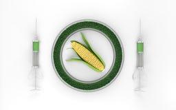 基因上在白色背景3d的修改过的玉米 免版税库存图片