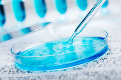 基因研究 免版税库存图片