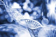 基因链子的图象在键盘背景的 免版税库存照片
