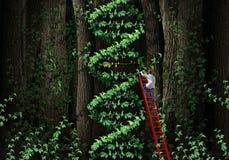 基因治疗 库存例证