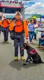 基多,厄瓜多尔- 2018年1月31日:室外观点的有一条美丽的黑拉布拉多狗的未认出的人,小组抢救 免版税图库摄影