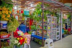 基多,厄瓜多尔- 2016年11月23日:与一些裸体主义者医学的一个花市场在位于圣的市政市场上 免版税库存图片