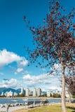 基斯兰奴海滩在温哥华,加拿大 免版税图库摄影