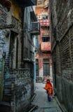 巴基斯坦女孩 库存图片