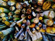 基本的木头 免版税库存图片
