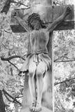 基督交叉迫害了圣洁耶稣 免版税库存照片
