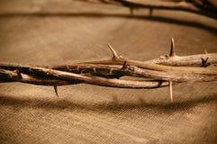 基督冠耶稣刺 免版税库存照片