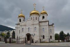 基督基督救世主大教堂  免版税图库摄影