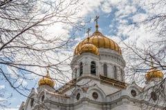 基督大教堂侧视图救主在莫斯科俄罗斯 库存图片